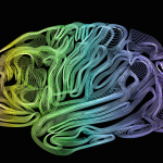 Stylized Brain